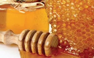 Abeilles-miel-enquete