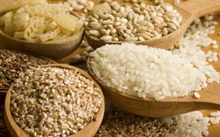 Bio-cereales-enquete-terroir